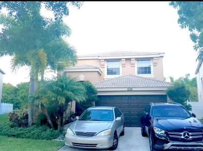 Royal Palm Beach Single Family Home For Sale: 1228 Oakwater Drive