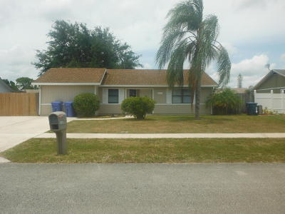 Royal Palm Beach Single Family Home For Sale: 10079 Patience Lane