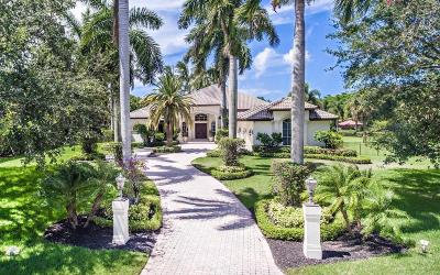 Palm Beach Gardens Single Family Home For Sale: 7733 Bold Lad Road