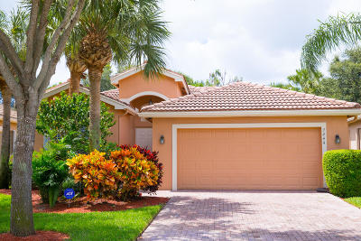 Boynton Beach Single Family Home For Sale: 7444 Twin Falls Drive
