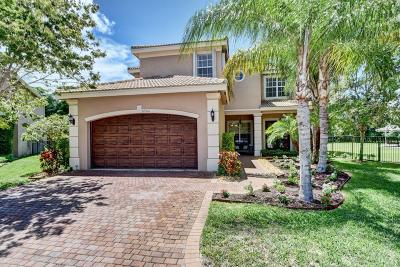 Boynton Beach Single Family Home For Sale: 8946 Hidden Acres Drive