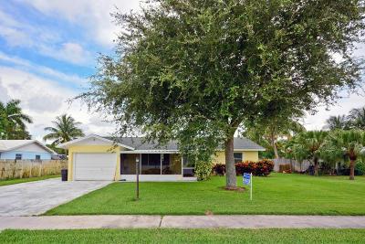 Ironwood Single Family Home For Sale: 500 Douglas Drive