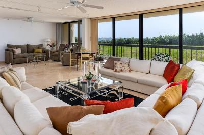 Palm Beach Condo For Sale: 3440 S Ocean Boulevard #102 N