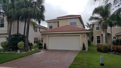 Lake Worth Single Family Home For Sale: 5069 Northern Lights Drive