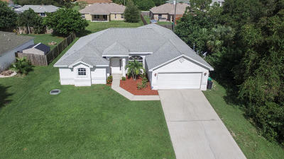 Port Saint Lucie Single Family Home For Sale: 2246 SW Lawrence Street