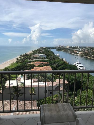 Broward County, Palm Beach County Rental For Rent: 1021 Hillsboro Mile #1103