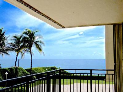 Ocean Pines Condo Condo For Sale: 3009 S Ocean Boulevard #206