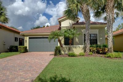 Delray Beach Single Family Home For Sale: 9744 Isles Cay Drive