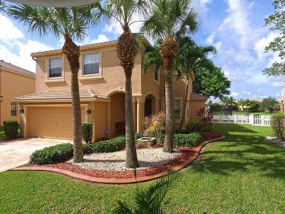 Royal Palm Beach Single Family Home For Sale: 2735 Misty Oaks Circle