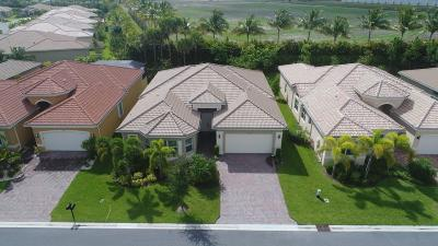 Boynton Beach Single Family Home For Sale: 8326 Cameron Cave Drive