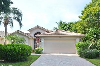 Boynton Beach Single Family Home For Sale: 7716 San Carlos Street