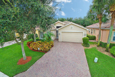 Boynton Beach Single Family Home For Sale: 7388 Twin Falls Drive