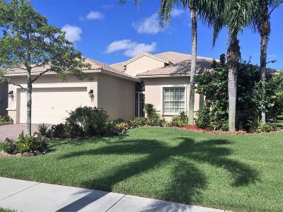 Boynton Beach Single Family Home For Sale: 8409 Grand Messina Circle