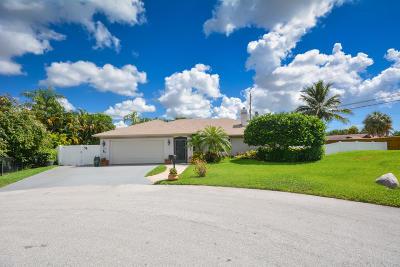 Boynton Beach Single Family Home Contingent: 4011 Blue Sage Path