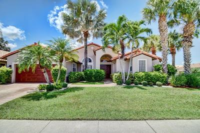 Boynton Beach Single Family Home For Sale: 6924 Chimere Terrace
