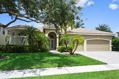 Boca Raton Single Family Home For Sale: 9562 Parkview Avenue