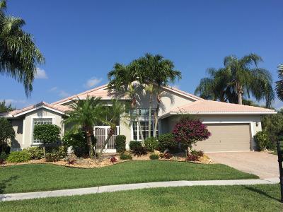 Boynton Beach Single Family Home For Sale: 7099 Falls Road E