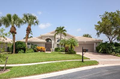Boynton Beach Single Family Home For Sale: 7218 Falls Road E