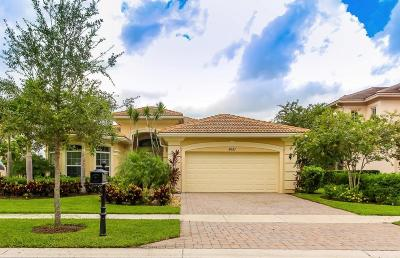 West Palm Beach Single Family Home For Sale: 8681 Wellington View Drive