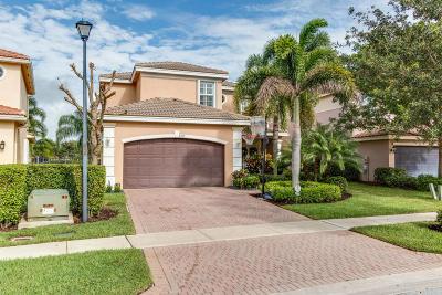 Boynton Beach Single Family Home For Sale: 8315 Emerald Winds Circle