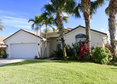 Jupiter Single Family Home For Sale: 6180 Leslie Street