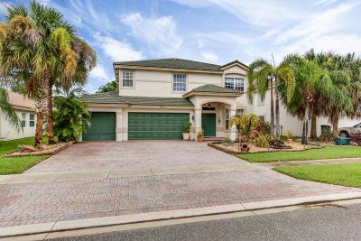 Wellington Single Family Home For Sale: 4090 Bahia Isle Circle