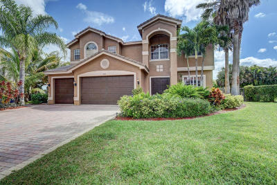 Delray Beach Single Family Home For Sale: 9507 Barletta Winds Point