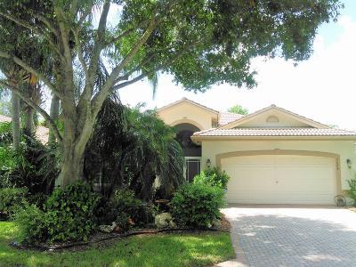Boynton Beach Single Family Home For Sale: 7684 San Carlos Street
