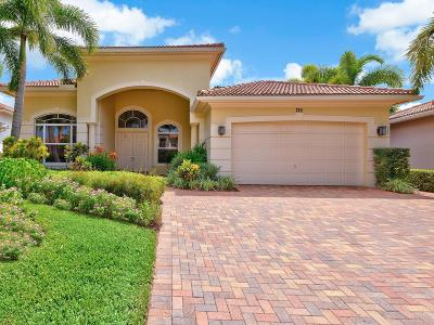 Palm Beach Gardens FL Single Family Home For Sale: $1,040,000