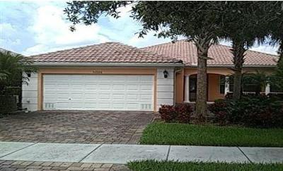 Port Saint Lucie Single Family Home For Sale: 11324 SW Olmstead Drive
