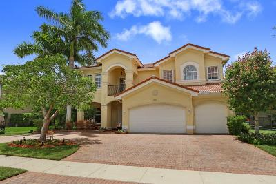 Boynton Beach Single Family Home For Sale: 10741 Castle Oak Drive