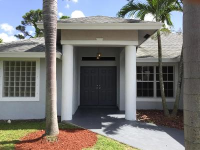 Delray Beach Single Family Home For Sale: 5318 Palm Ridge Boulevard
