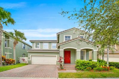 Lake Worth Single Family Home For Sale: 5204 Sancerre Circle