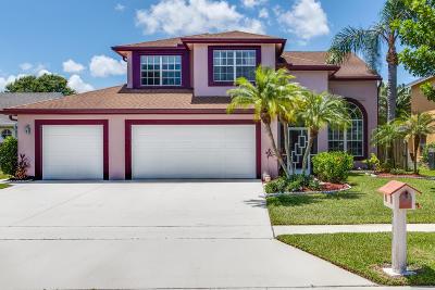 Boynton Beach Single Family Home For Sale: 9042 Paragon Way