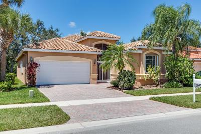 Boynton Beach Single Family Home For Sale: 7645 Trapani Lane