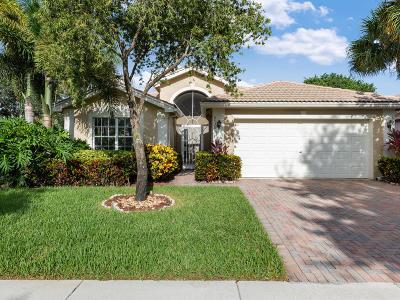 Boynton Beach Single Family Home For Sale: 6536 Malta Drive