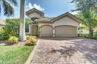 Boynton Beach Single Family Home For Sale: 11057 Sunset Ridge Circle