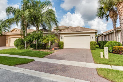Boynton Beach Single Family Home For Sale: 10839 Summerville Way