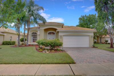 Lake Worth Single Family Home For Sale: 9541 Taormina Street