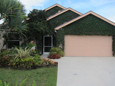Wellington Single Family Home For Sale: 1276 Waterway Cove Drive