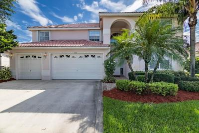 Lake Worth Single Family Home For Sale: 6231 Floridian Circle