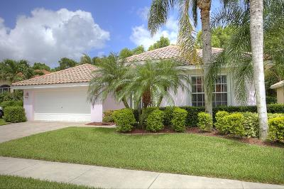 Boynton Beach Single Family Home For Sale: 6714 Jog Palm Drive