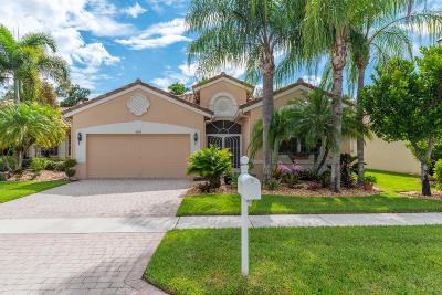 Lake Worth Single Family Home For Sale: 9843 Mantova Drive