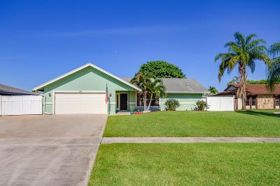 Royal Palm Beach Single Family Home For Sale: 252 Ponce De Leon Street