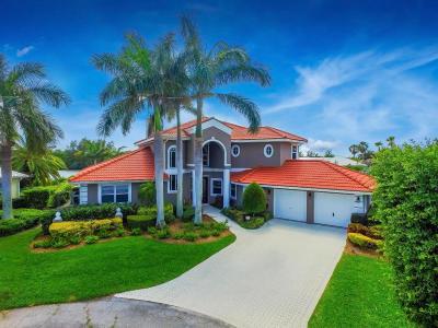 Jensen Beach Single Family Home For Sale: 87 Aqua Ra Drive