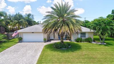 Delray Beach Single Family Home For Sale: 3691 Lakeview Boulevard