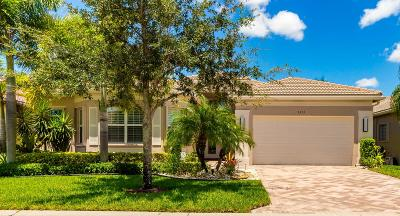 Boynton Beach Single Family Home For Sale: 9833 Halston Manor