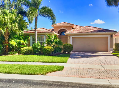 Boynton Beach Single Family Home For Sale: 7540 Sagunto Street