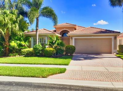 Boynton Beach Single Family Home For Sale: 7540 Sagunto Street