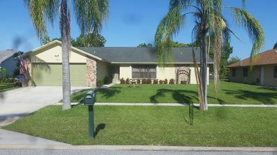 Royal Palm Beach Single Family Home For Sale: 326 La Mancha Avenue